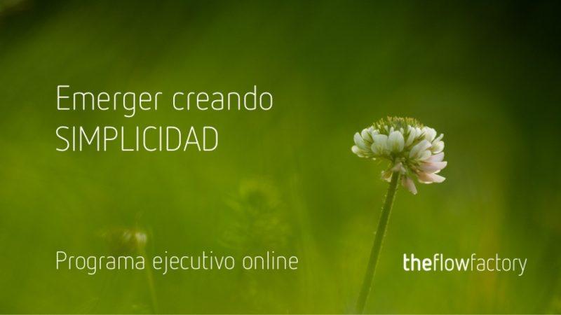 EMERGER CREANDO SIMPLICIDAD -PROGRAMA EJECUTIVO ONLINE.jpg